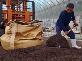 麦茶粕※2の乾燥作業